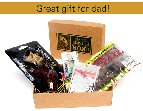 Father 39 s day fishing gifts for dad mystery tackle box for Fishing gifts for dad