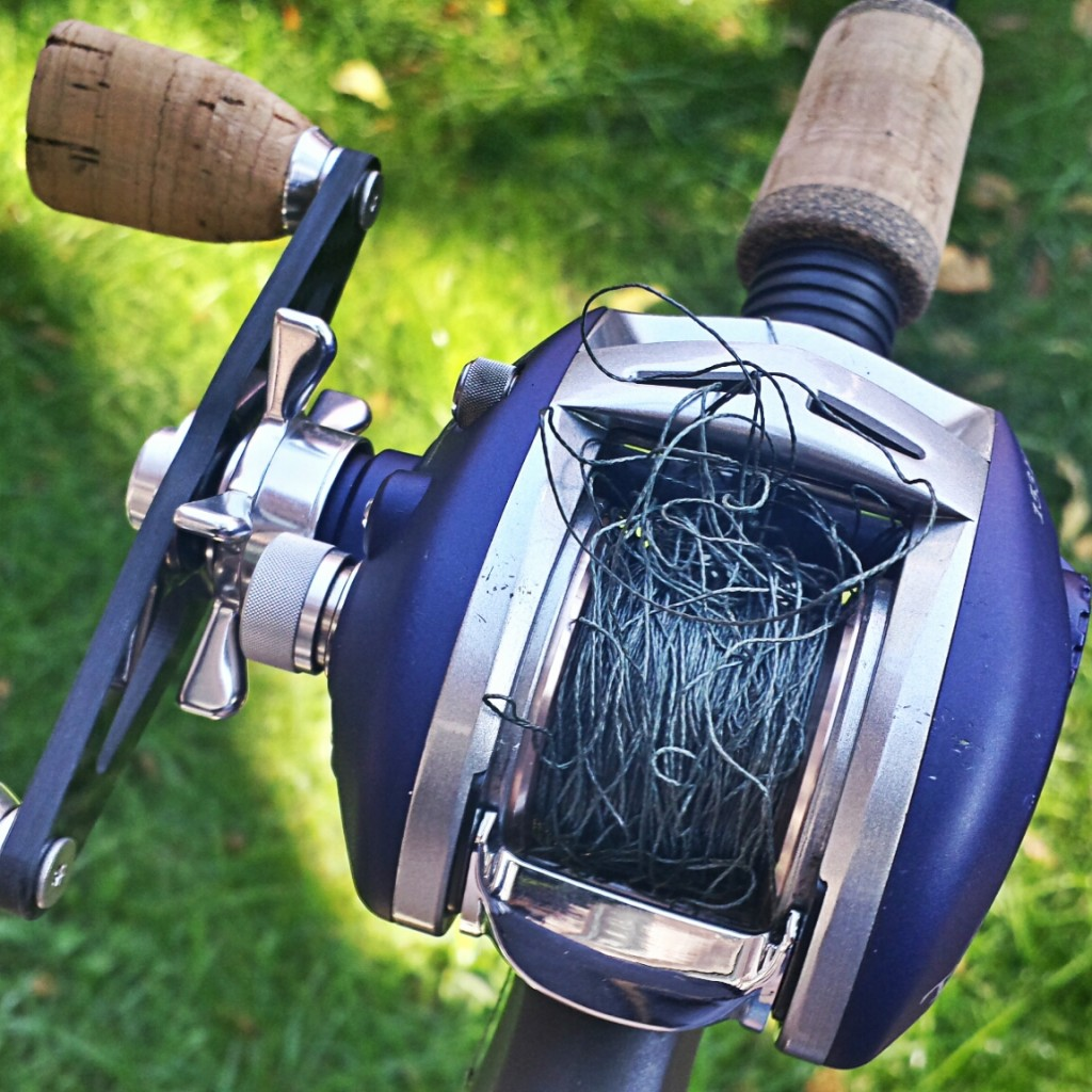 bass fishing reel backlash