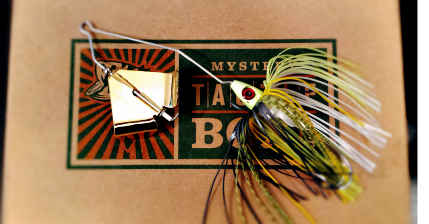 3 Topwater Baits That Dominate Cold Water