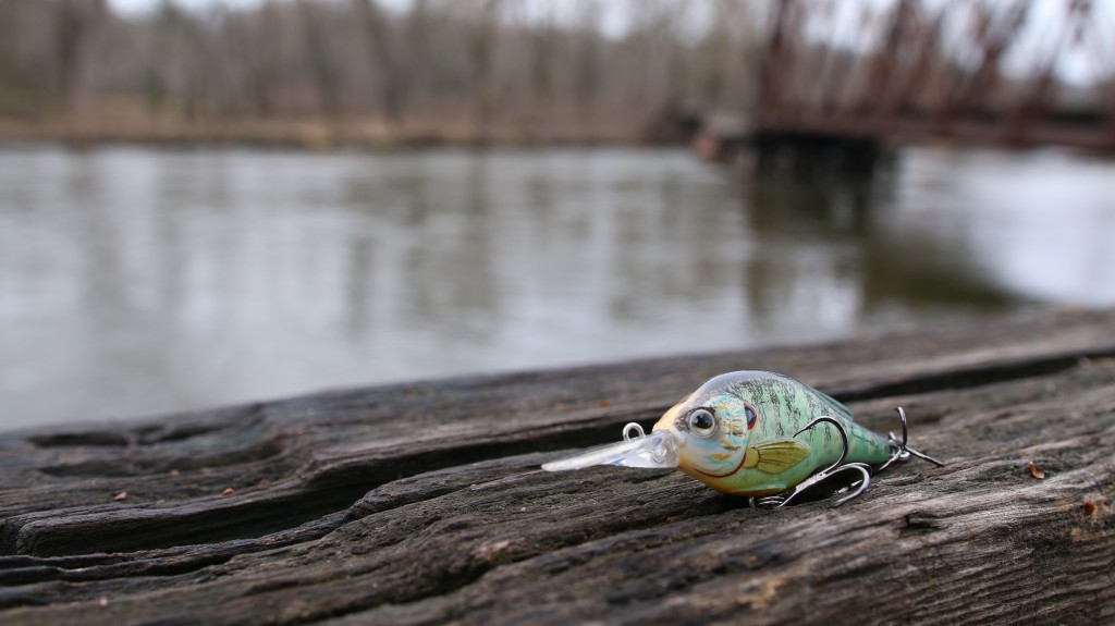 7 bed fishing tehniques you probably haven't tried, Hard Baits