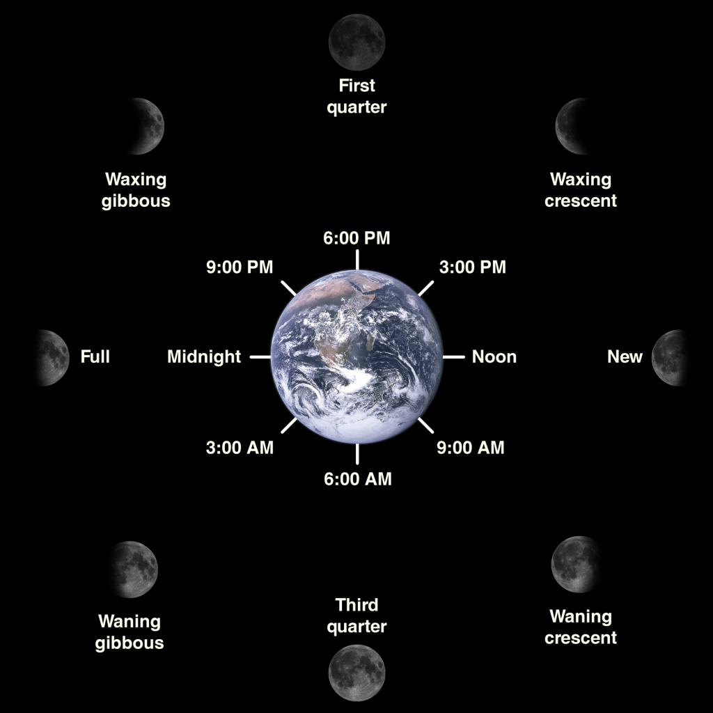 effect of the lunar phase on 14 occurred at the quarter phase, five at the full moon and two followed an  eclipse some scientists claim that the lunar effect is gravitational, ie.