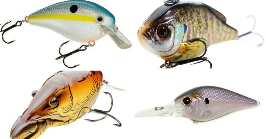 crankbait color selection