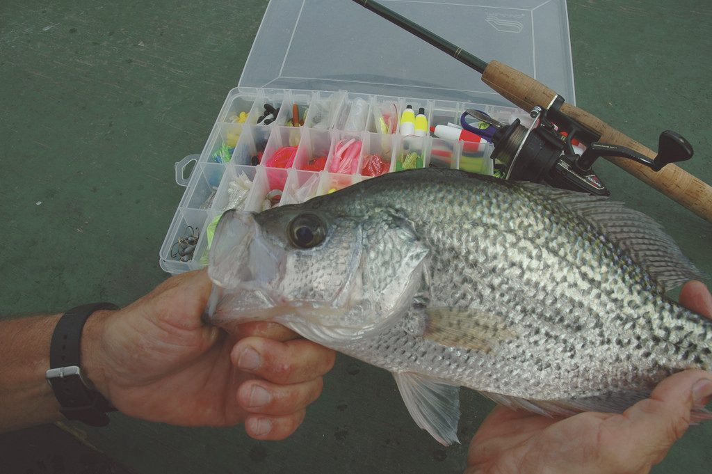 Where to find fall slab crappie and how to catch them for Crappie fishing jig