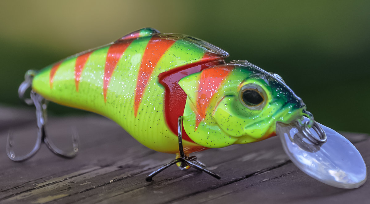 Everything You Ever Wanted To Know About Crankbaits