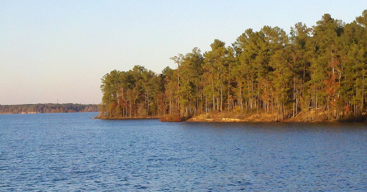 The top 7 bass fishing destinations in north carolina for Freshwater fishing in north carolina
