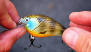 Squarebill Fishing: When To Throw A Square Billed Lure