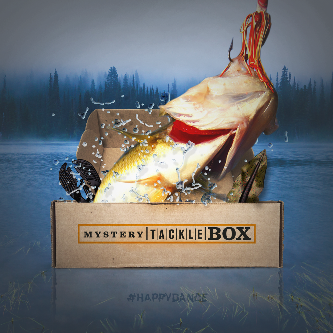 Drop shot rig tips how to fish this great finesse for Fishing mystery box