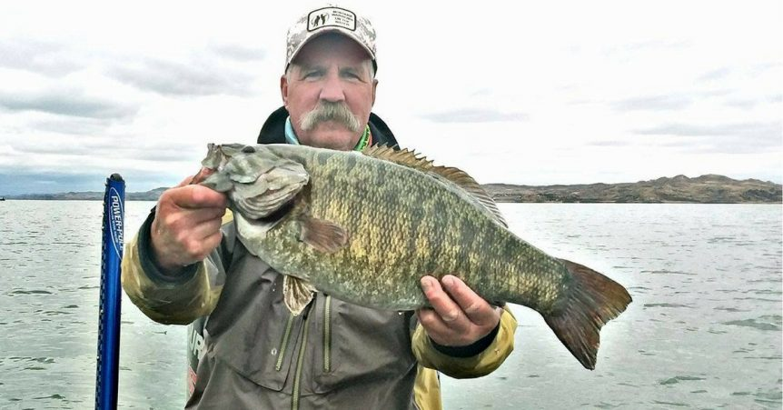 smallmouth bass records by state