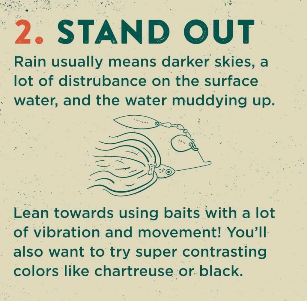 summer rain fishing tips - stand out