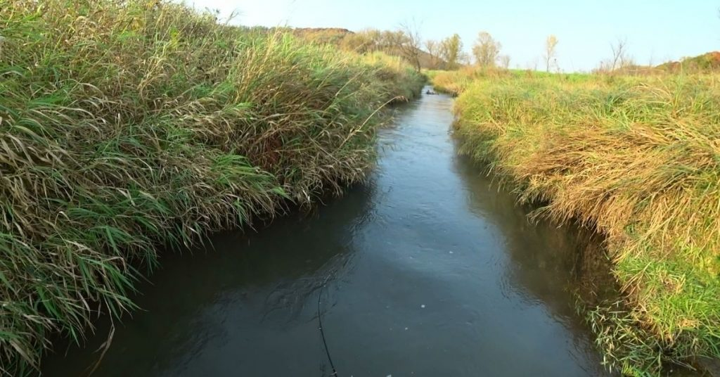 trout fishing wisconsin driftless small stream